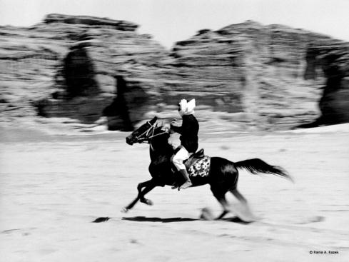 3_Bedouin Rider_Rania A. Razek